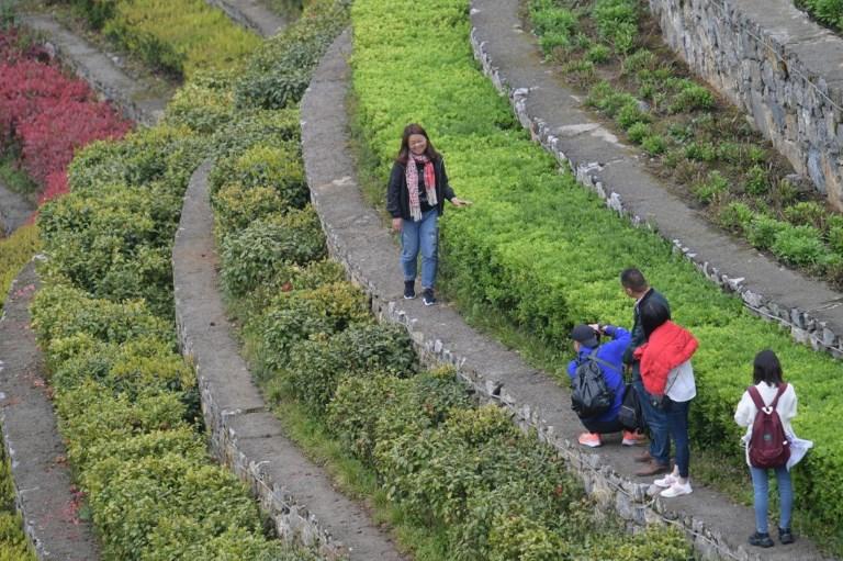 CHINA - GUIZHOU - DAFANG - SPRING - SCENERY - TERRACED FIELDS (CN)